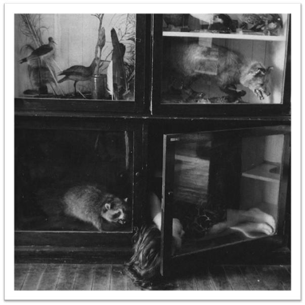 03-providence-untitled_8